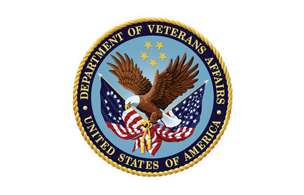 Plan to Consolidate Programs of Department of Veterans Affairs to Improve Access to Care